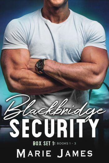 Blackbridge Security Box Set 1